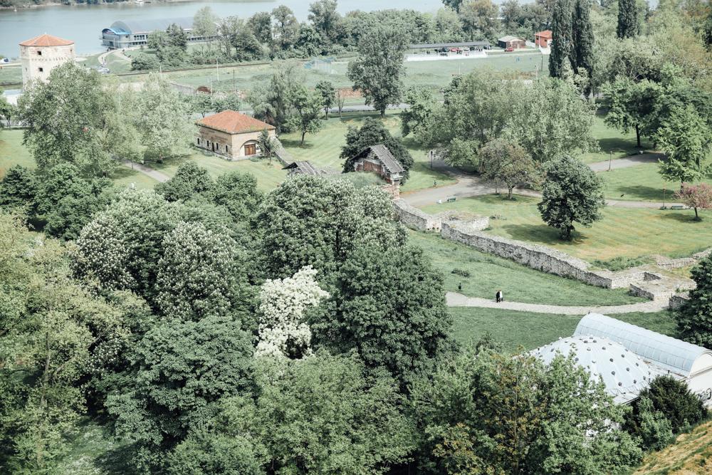 tbelgrade-0143